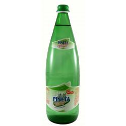 Acqua Pineta Minerale Leggermente Frizzante 1,0 Lt VAP