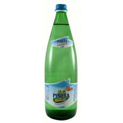 Acqua Minerale Pineta Frizzante 1,0 L VAP